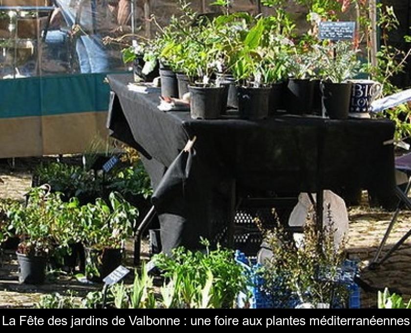 La Fete Des Jardins De Valbonne Une Foire Aux Plantes