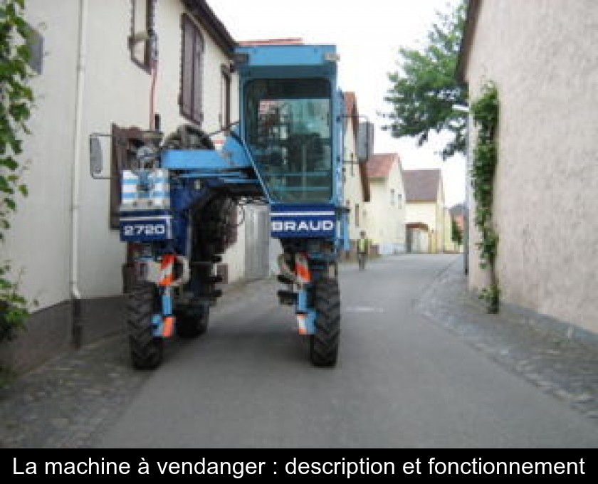 La machine à vendanger : description et fonctionnement