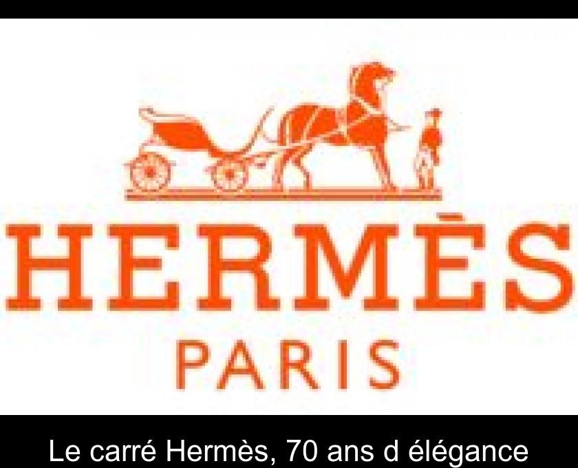 2a79b9fd02f Le carré Hermès