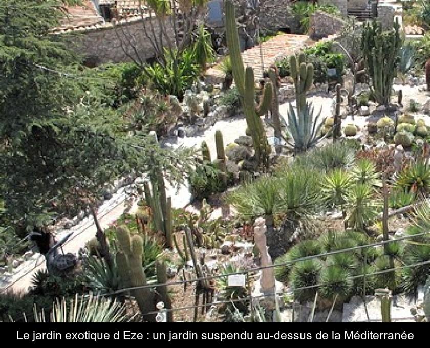 Le jardin exotique d\'Eze : un jardin suspendu au-dessus de la ...