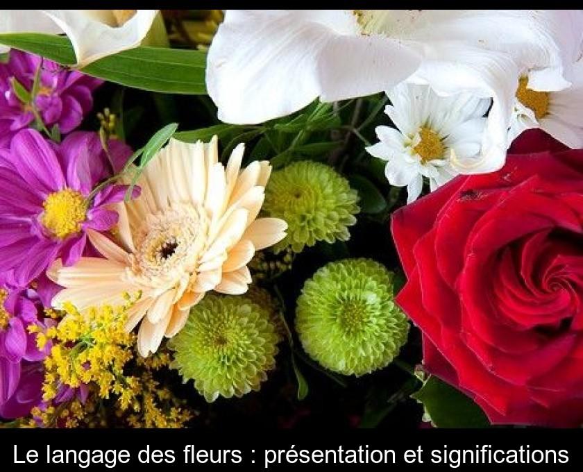 07afed93a9d Le langage des fleurs   présentation et significations