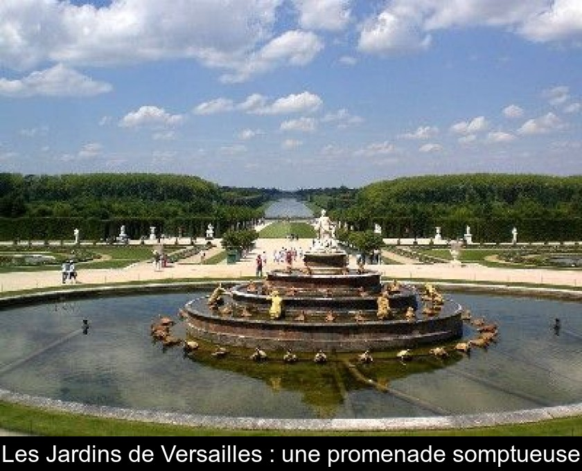 Les Jardins De Versailles Une Promenade Somptueuse