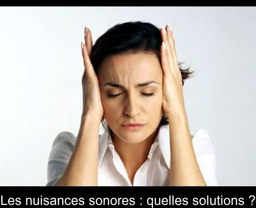 Les Nuisances Sonores Quelles Solutions