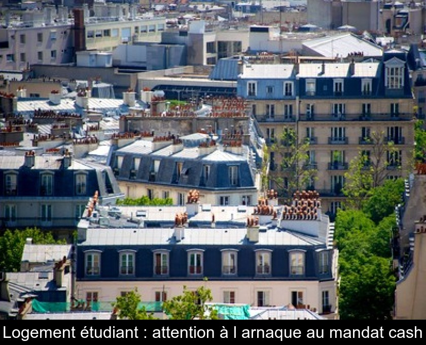 Logement étudiant : attention à l'arnaque au mandat cash