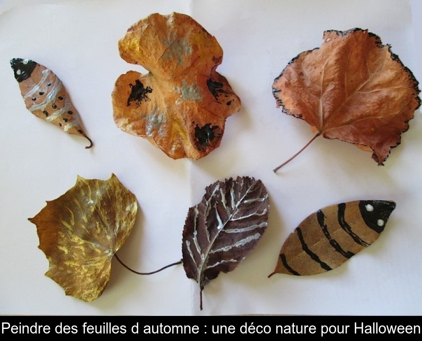 Peindre Des Feuilles D Automne Une Deco Nature Pour Halloween