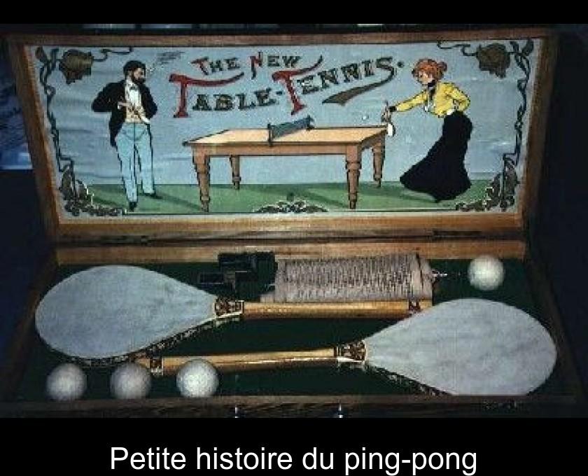 Petite Histoire Du Ping Pong