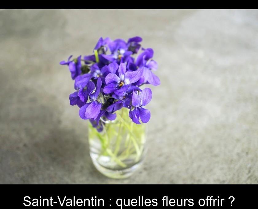 681b265d372 Saint-Valentin   quelles fleurs offrir