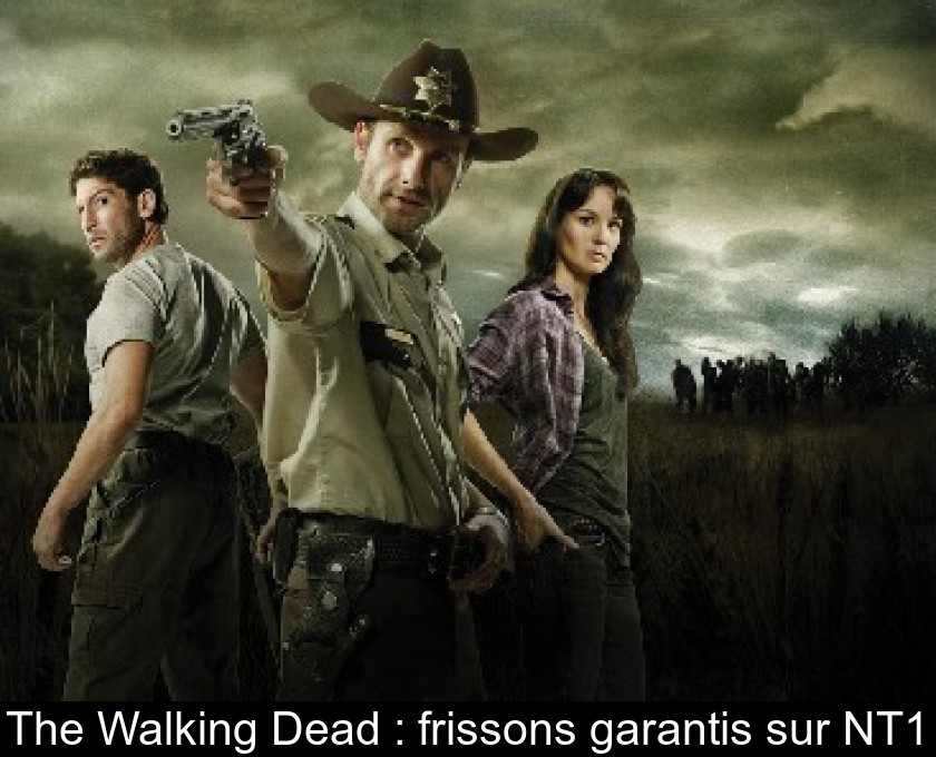 The Walking Dead : frissons garantis sur NT1