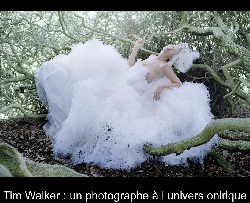 Tim Walker : un photographe à l'univers onirique