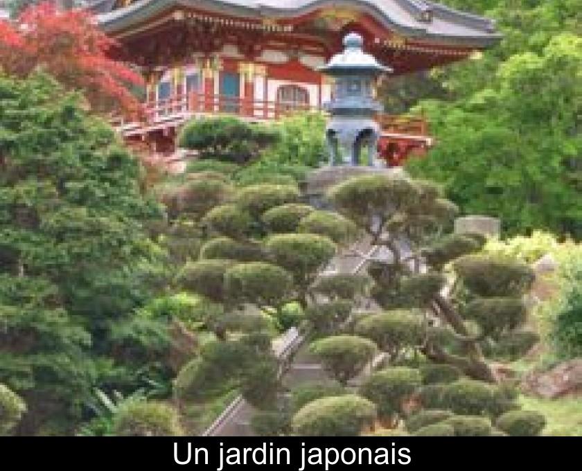 Un jardin japonais - Plantes jardin japonais ...
