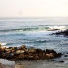 carte ocean hendaye