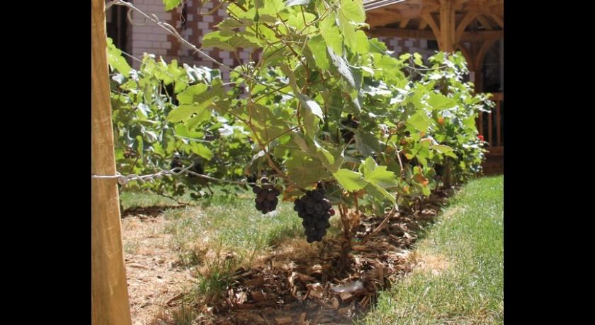 Le monde vigneron troyes - Piscine municipale troyes ...