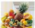 Articles Gastronomie et Alimentation