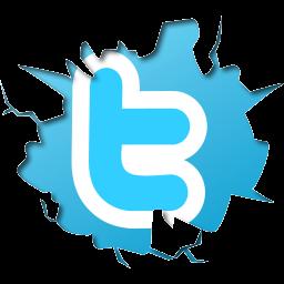 connectez-vous avec votre compte Twitter