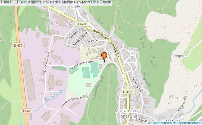 plan Plateau EPS/Multisports/city-stades Moirans-en-Montagne : 1 équipements