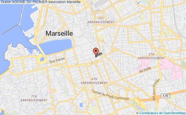 plan association Agonie Du Palmier Marseille