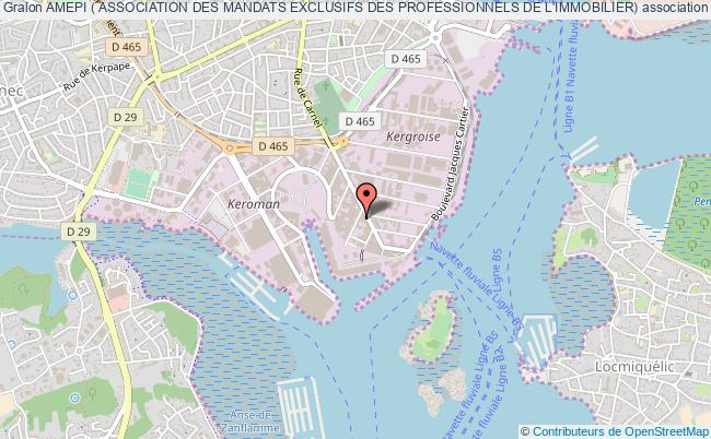 plan association Amepi ( Association Des Mandats Exclusifs Des Professionnels De L'immobilier)