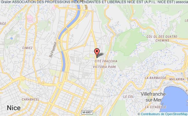 plan association Association Des Professions Independantes Et Liberales Nice Est (a.p.i.l. Nice Est)