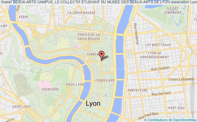 plan association Beaux-arts Campus, Le Collectif Étudiant Du MusÉe Des Beaux-arts De Lyon