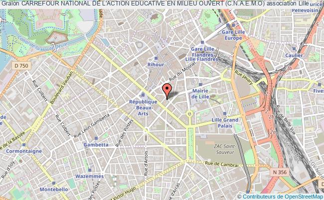 plan association Carrefour National De L'action Educative En Milieu Ouvert (c.n.a.e.m.o)