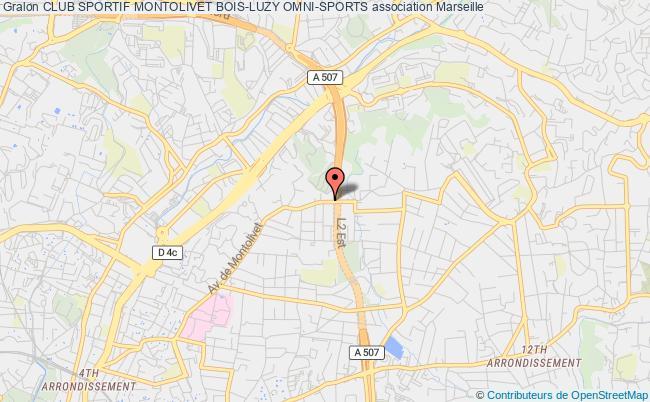 plan association Club Sportif Montolivet Bois-luzy Omni-sports