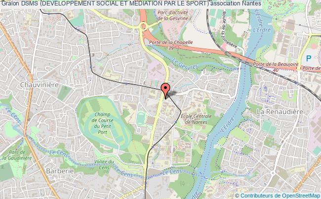 plan association Dsms (developpement Social Et Mediation Par Le Sport)