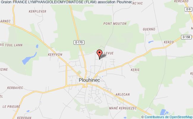 plan association France Lymphangioleiomyomatose (flam)