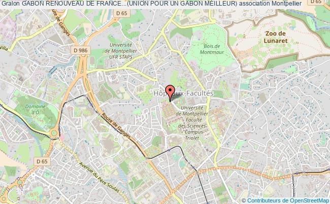 plan association Gabon Renouveau De France...(union Pour Un Gabon Meilleur)