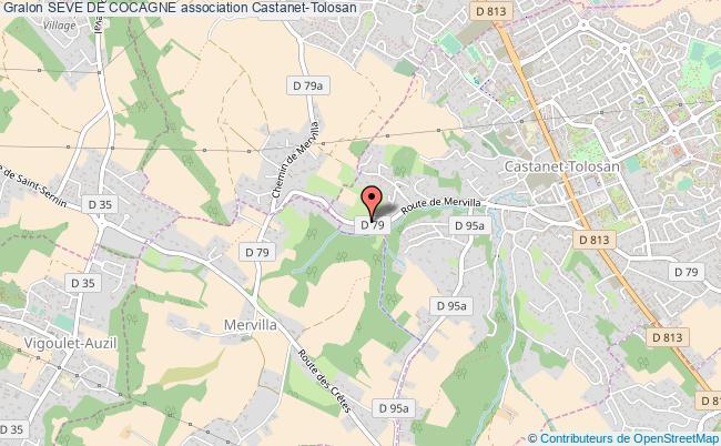 plan association Seve De Cocagne Castanet-Tolosan