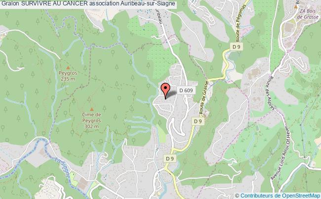 plan association Survivre Au Cancer