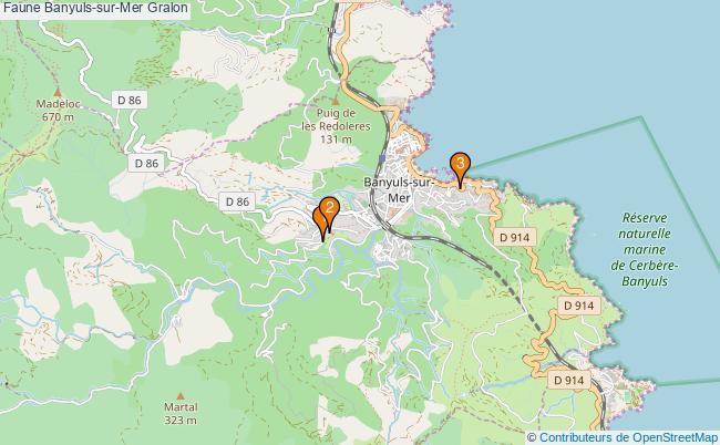 plan Faune Banyuls-sur-Mer Associations faune Banyuls-sur-Mer : 5 associations