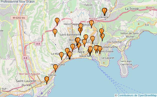 plan Professionnel Nice Associations professionnel Nice : 105 associations