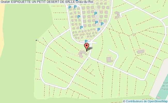 plan Espiguette Un Petit Desert De Salle