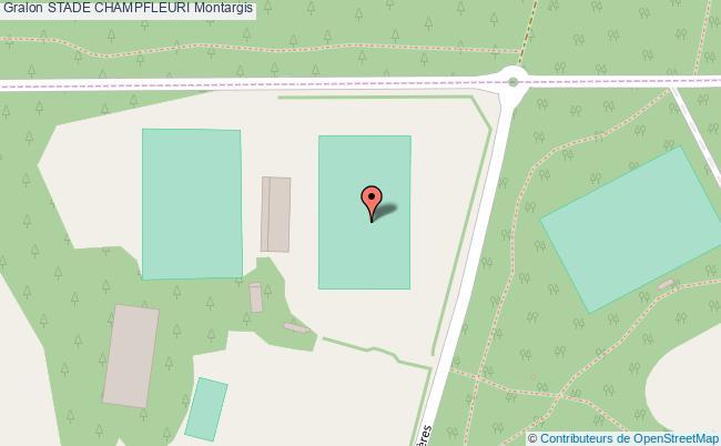 Terrain d 39 honneur de rugby stade champfleuri montargis for Plan de montargis