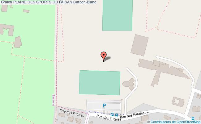 Terrain de football plaine des sports du faisan carbon blanc for Piscine carbon blanc