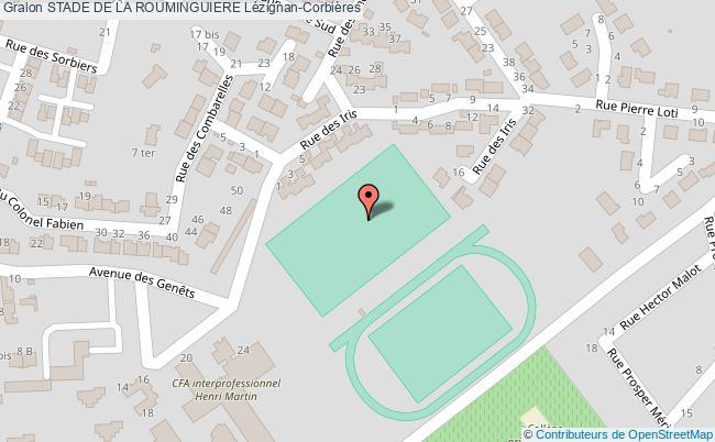 plan Terrain De Rugby Du  Stade De La Rouminguiere De Lezignan-corbieres