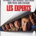 DVD LES EXPERTS