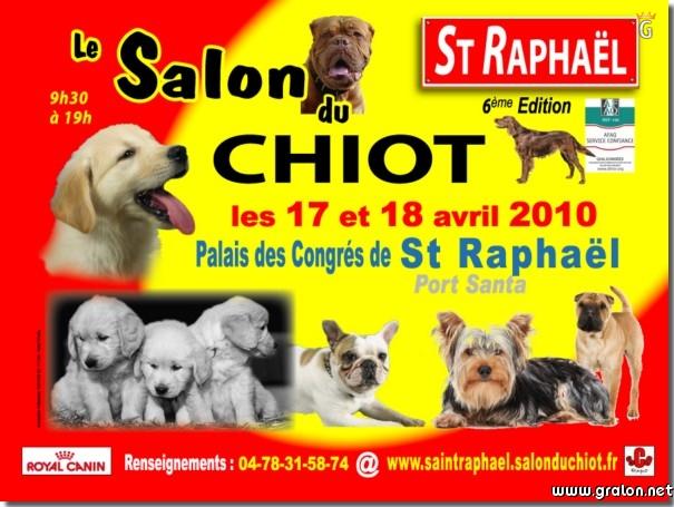 Zoom photos for Salon du chiot blois