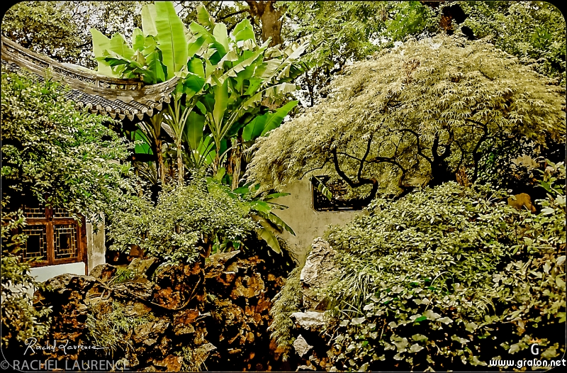 Zoom photos for Jardin yu shanghai