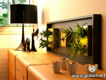 photo le cadre vegetal chez wall garden photos plantes grimpantes pau. Black Bedroom Furniture Sets. Home Design Ideas