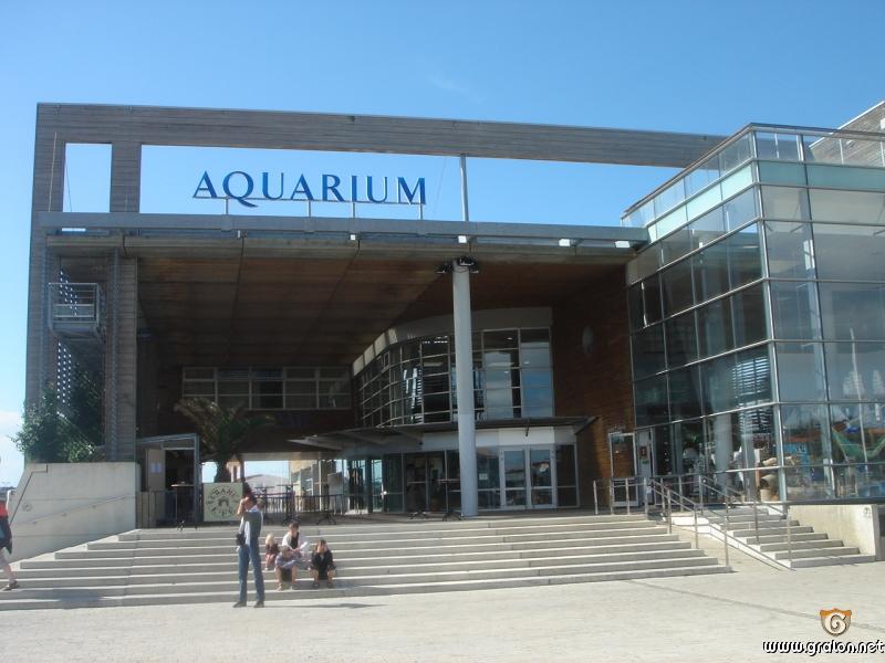 Aquarium La Rochelle La Rochelle Tourisme Aquariums