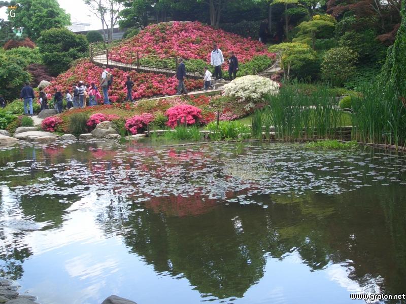 Tourisme boulogne billancourt informations boulogne for Etang jardin
