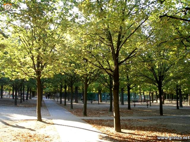 Palais du luxembourg for Jardin luxembourg horaires