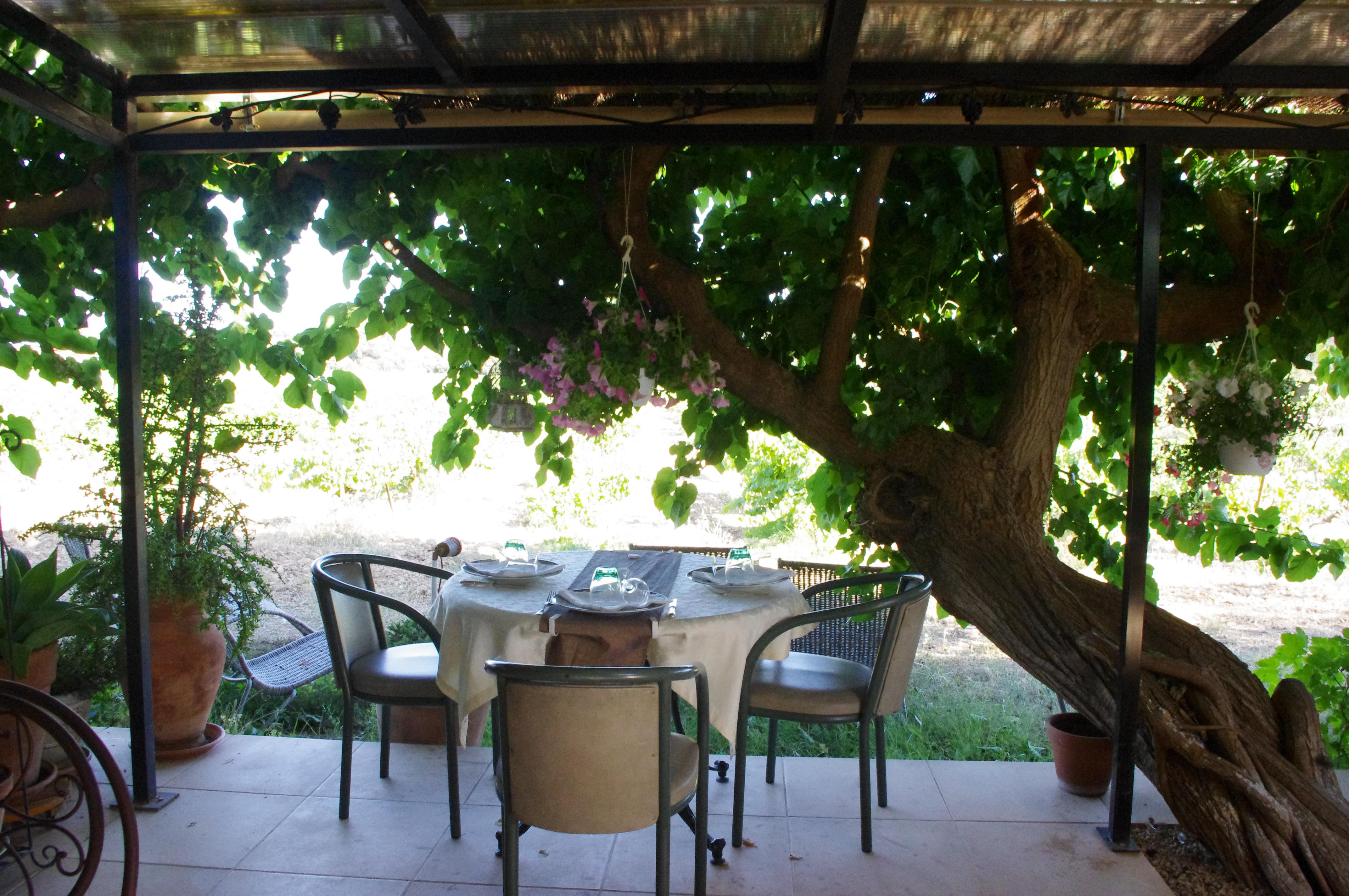 restaurant fran§ais Le Clos des Vignes Cotignac