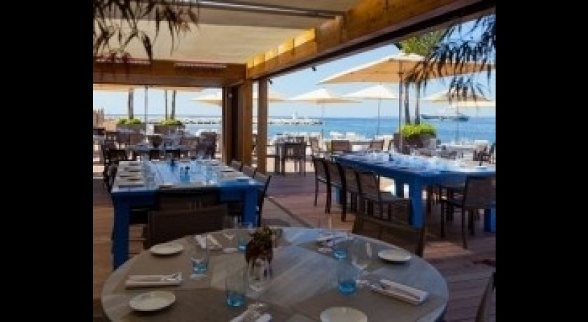 Restaurant le cap antibes juan les pins for Resto le jardin antibes