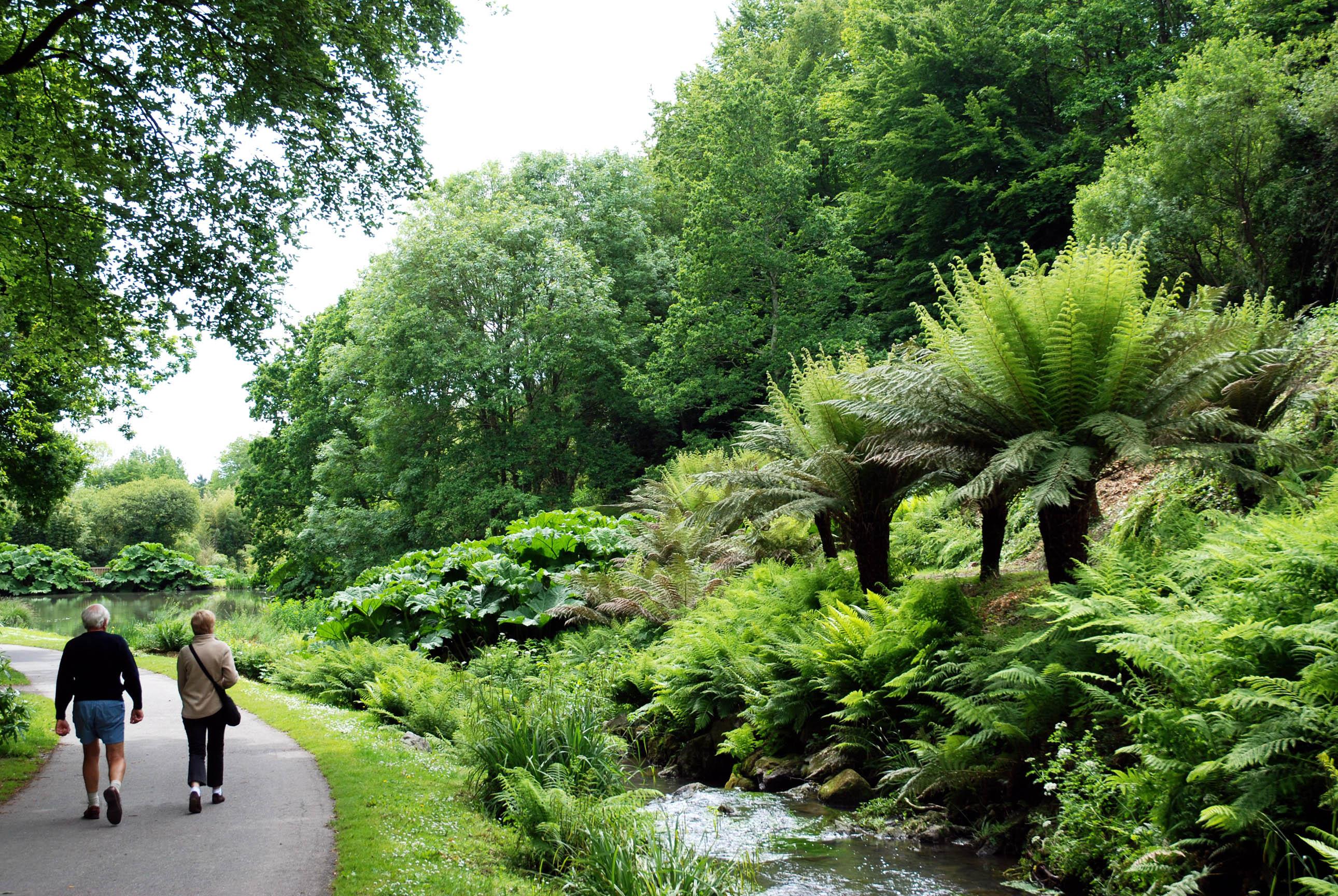 Conservatoire botanique national de brest for Jardin botanique de conception