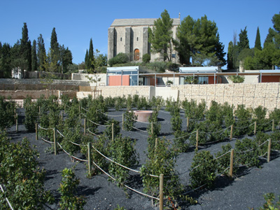 jardin romain caumont sur durance