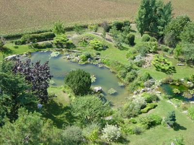 Jardin Zen Avec Fontaine
