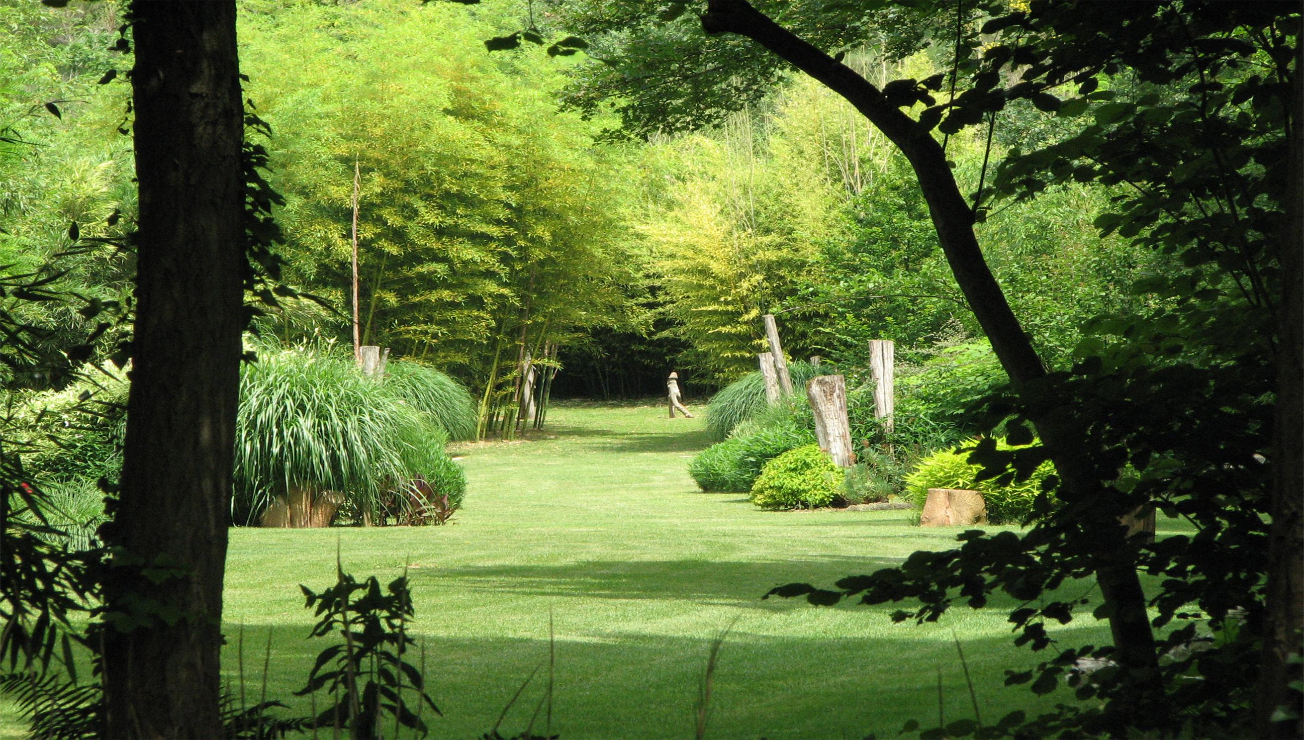 Le parc aux bambous lapenne for Entreprise parc et jardin