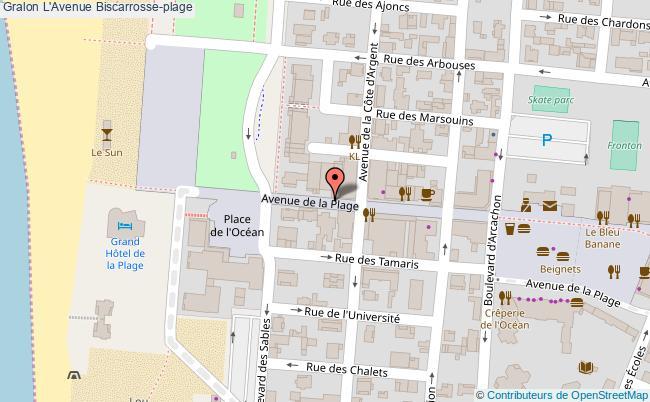 l 39 avenue biscarrosse plage tourisme bar th me. Black Bedroom Furniture Sets. Home Design Ideas